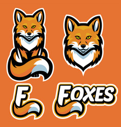 fox mascot character set vector image