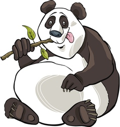 giant panda bear vector image