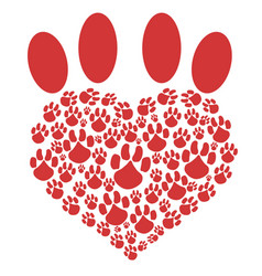 red heart pet paw vector image vector image