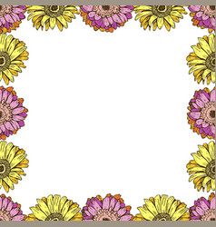 seamless pattern with daisies flower on white vector image