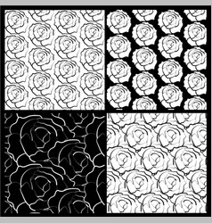 white and black roses background vector image