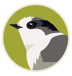 Wild birds canada gray jay round vector
