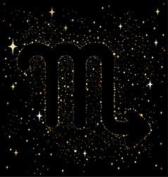 zodiac 6123 vector image