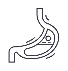 stomach line icon sign on vector image