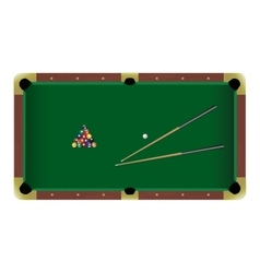 American pool billiard table with a cue and balls vector image