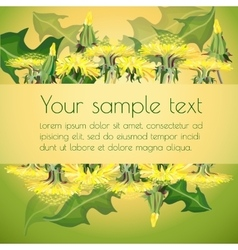 Dandelions on floral background vector image