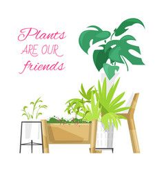 green home plants poster vector image