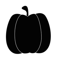 isolated cute pumpkin vector image