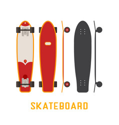 Skateboard bottom side and top view vector