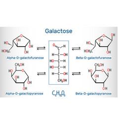 Tautomeric forms d-galactose milk sugar vector