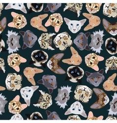 flat dark seamless pattern pedigree cats vector image vector image