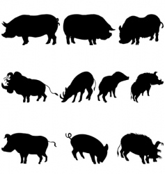 pigs and boars silhouettes set vector image vector image