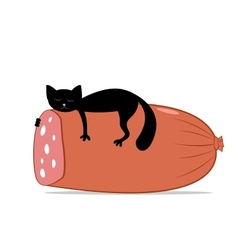 black cat and huge sausage vector image