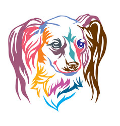 colorful decorative portrait of dog long haired vector image