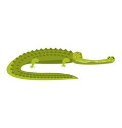 Crocodile isolated alligator on white background vector
