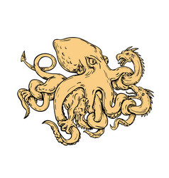 Giant octopus fighting hydra drawing vector