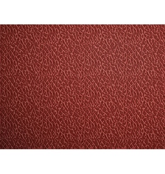red leather Stock vector image