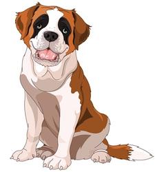 St bernard dog vector