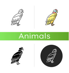 Condor icon vector