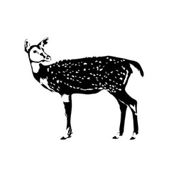 deer silhouette in black and white vector image