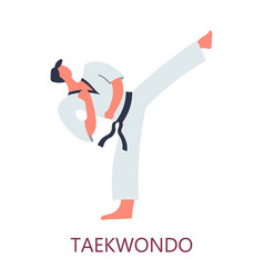 Fighting art taekwondo korean fight style kick vector