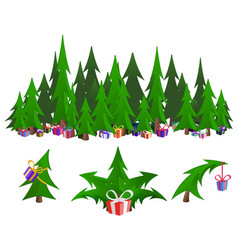 gift firs vector image