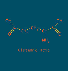 Glutamic amino acid molecule vector