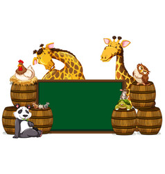 Green board with giraffes and other animals vector