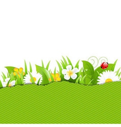 green torn paper with flowers and grass vector image