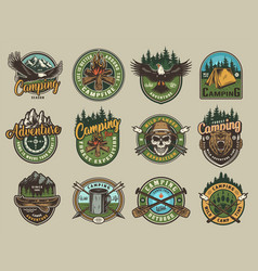 Vintage colorful camping emblems vector