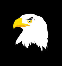 white head eagle on black background in flat vector image