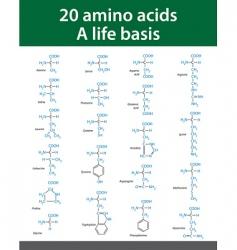 amino acids vector image vector image
