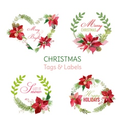 Christmas Poinsettia Flowers Banners and Tags vector image vector image