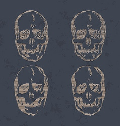 Set of Skulls isolated on background vector image vector image