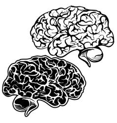 Human Brain sketch cartoon vector image vector image