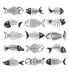 fish bones silhouettes vector image