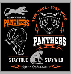 panther sport t-shirt graphics vintage apparel vector image
