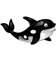 killer whale vector image vector image