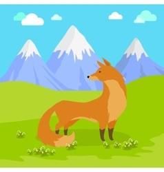 Red fox standing on the meadow in the mountains vector