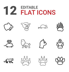 Cat icons vector