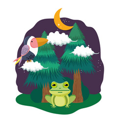 Cute bird toucan with toad in the landscape vector