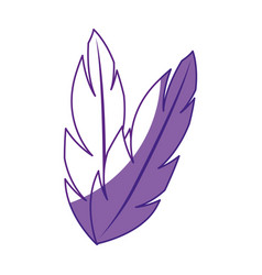 Feathers animal nature vector