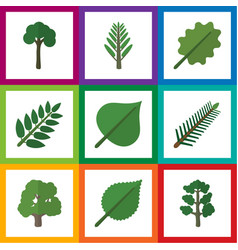 flat icon nature set of linden forest alder and vector image