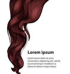Hair style and care design template vector