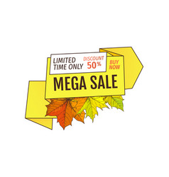 limited time only buy now discount promo label vector image