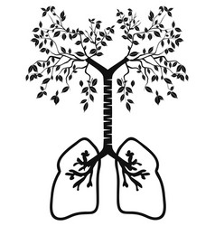 lung tree vector image