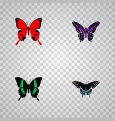 Set of moth realistic symbols with tropical moth vector