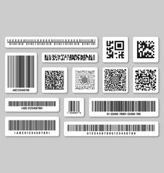 set product barcodes and qr codes vector image