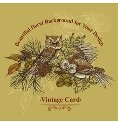 Forest greeting card with owls spruce and fir vector image