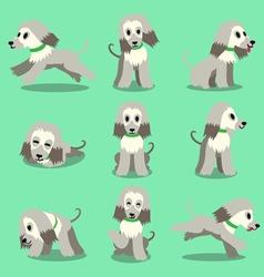 Cartoon character afghan hound dog poses set vector image